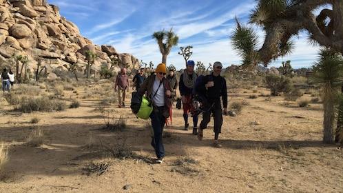 Group of rock climbers walk to their rock climbing spot
