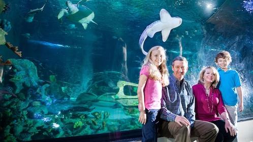 family enjoying the aquarium in Manchester