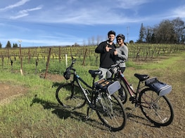 Healdsburg Cycling Wine Tour in Sonoma County