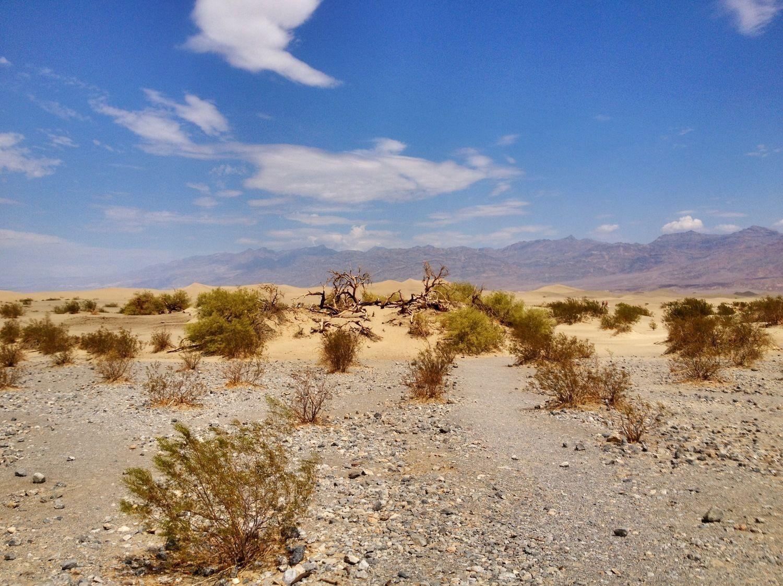 Mojave Desert with Bindlestiff Tours Ghost Town Tour.jpg