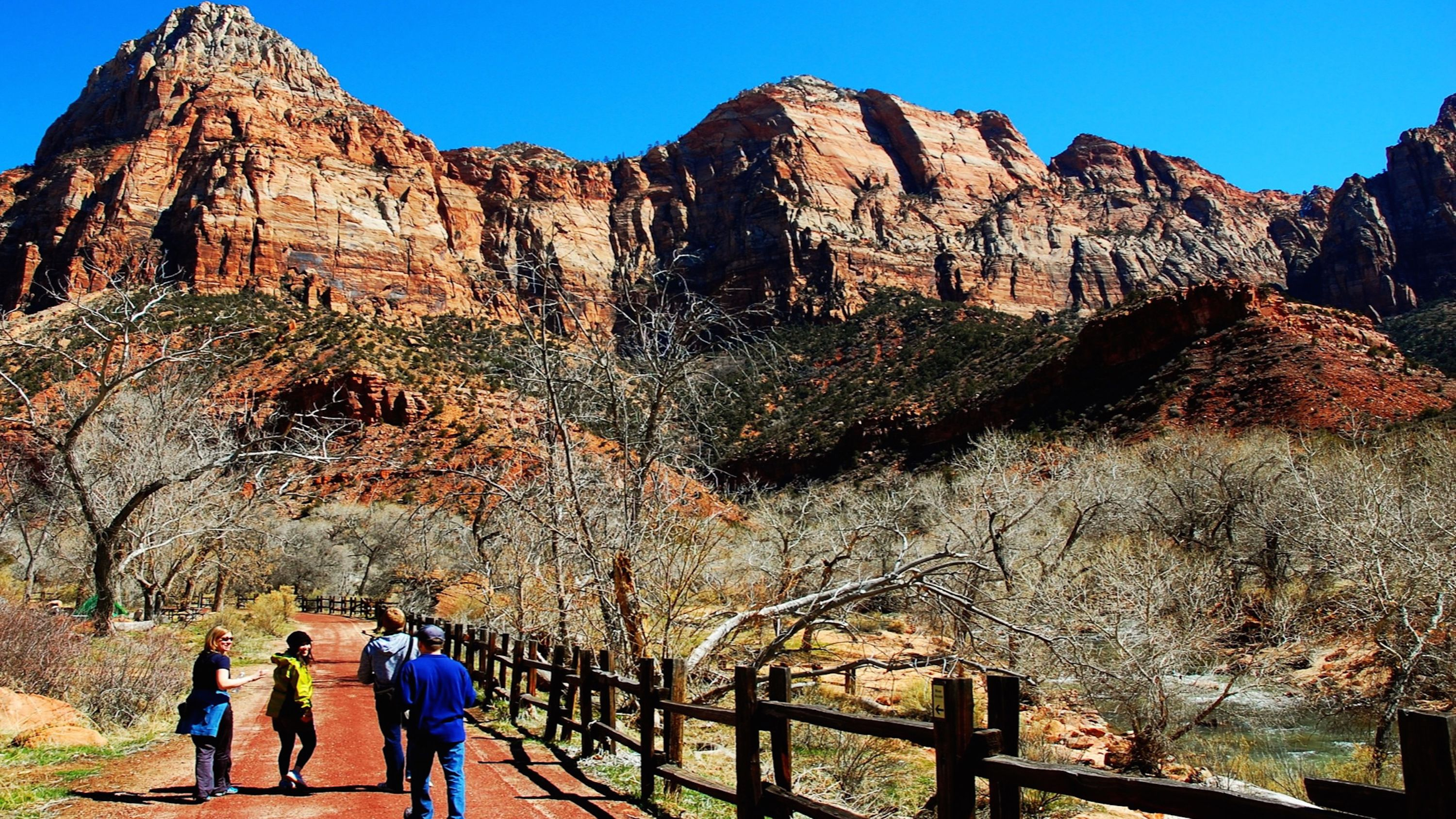 Private Zion National Park Day Tour for 5 with Expert Guide