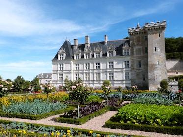 Potager_du_château_de_Villandry_21.JPG