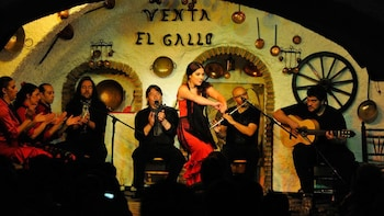 Combo Experience: Admission to Alhambra & Live Flamenco Show