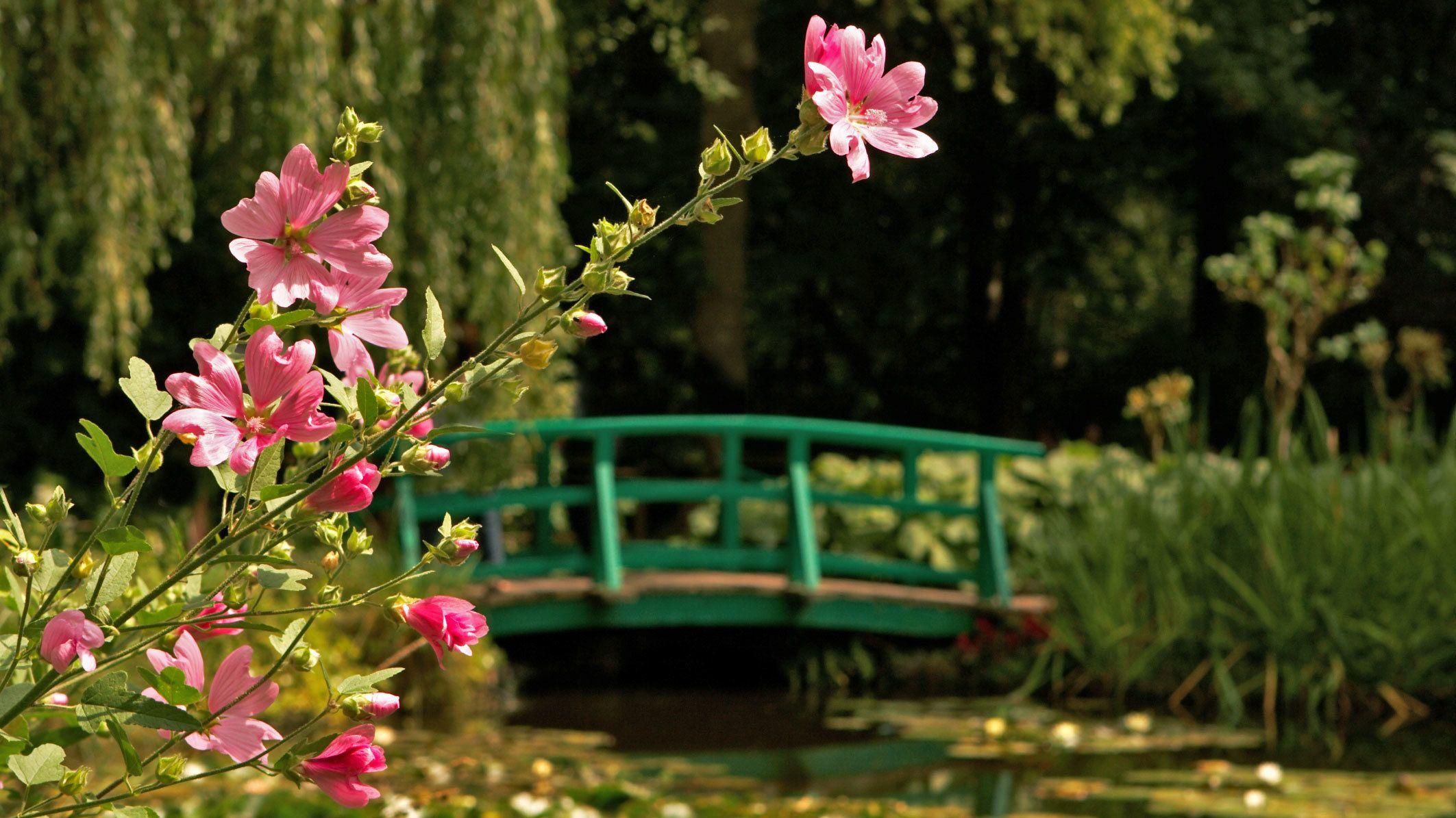 garden in paris