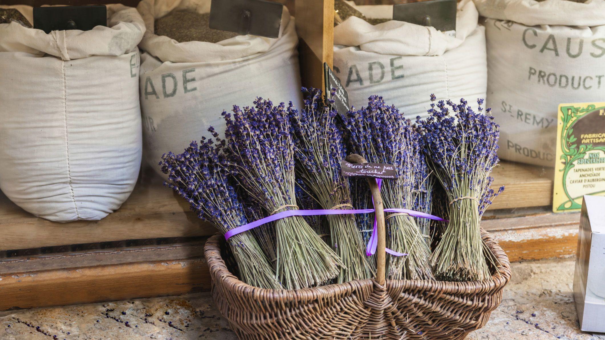 bundles of lavender in basket