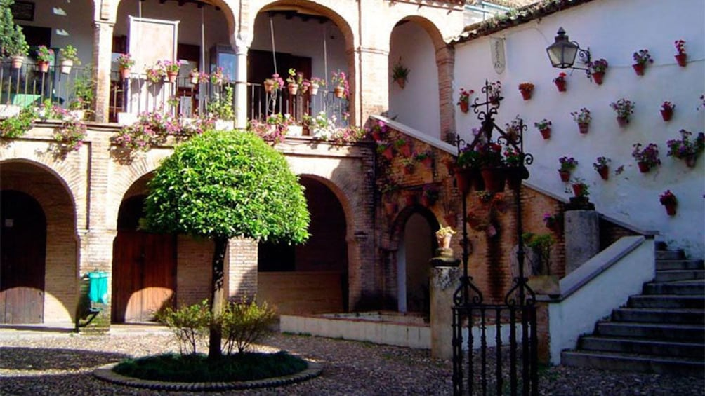 Cargar foto 4 de 7. Small courtyard between buildings in Cordoba