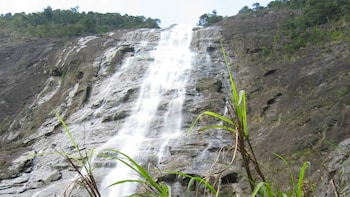 Private Tour of Bach Ma National Park with Lunch