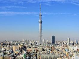 Tour de un día completo en autobús turístico en Tokio con crucero