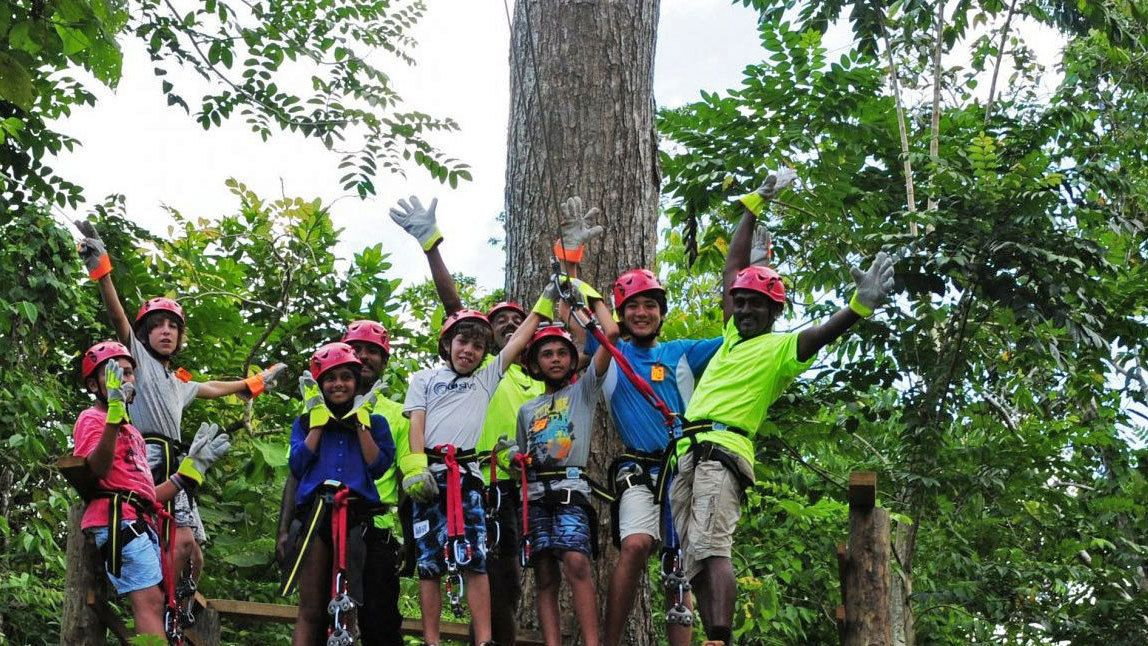 zipline group on platform amoung trees