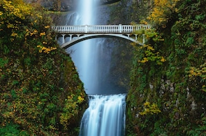 Half-Day Columbia River Gorge Waterfalls Tour from Portland