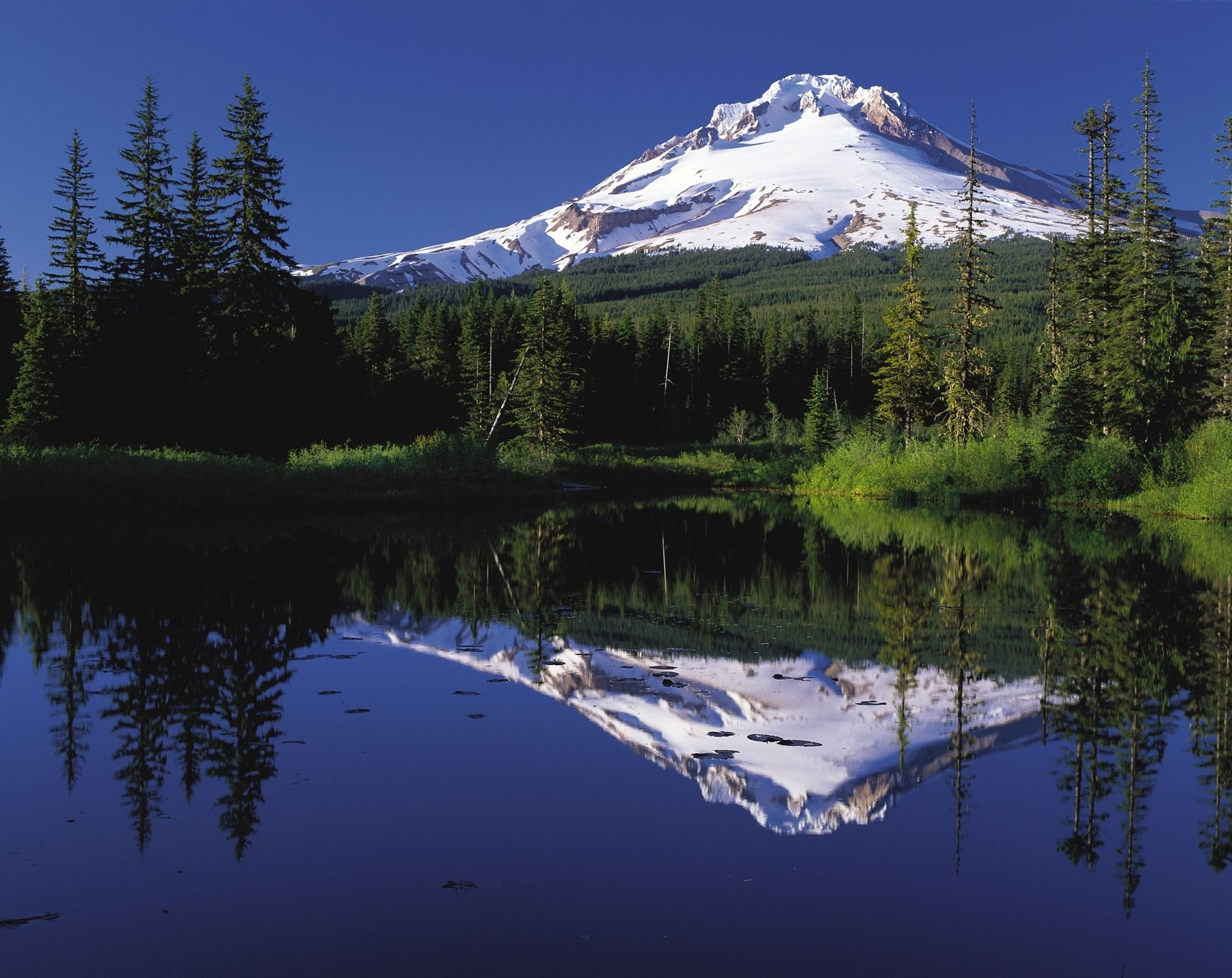 Columbia Gorge Waterfalls & Mt. Hood Tour from Portland