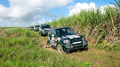 SUV's driving off road in Punta Cana
