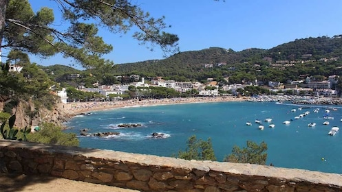 Secluded beach and harbor in Costa Brava