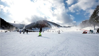 Private Trip to Alpensia Ski Resort