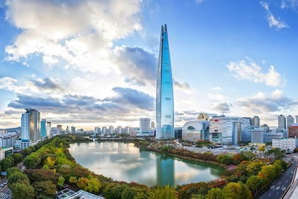 Lotte World Theme Park, Han River Cruise & N Seoul Tower Tour