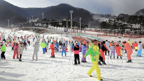 Crowds of skiers in the snow in South Korea