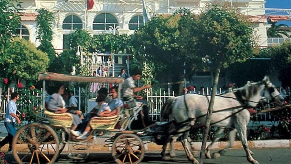Show item 2 of 5. Horse carriage in Istanbul