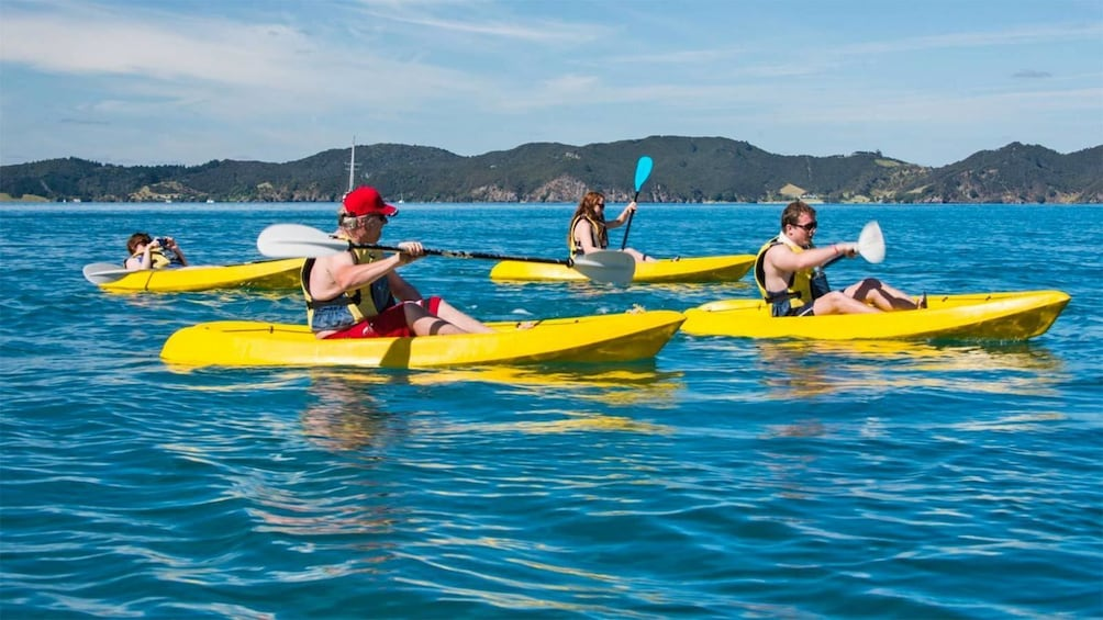 Show item 3 of 5. Kayaks on the Bay of Islands, New Zealand