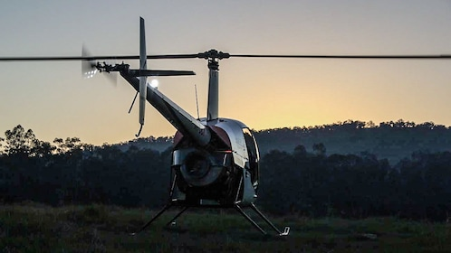 Helicopter landing on grass at sunset.