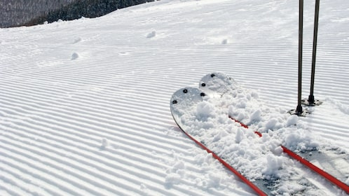 Close up of a pair of skis on a groomed hill in Salt Lake City