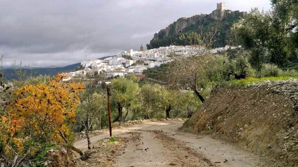 Show item 1 of 8. a narrow dirt road leading to a town in Spain