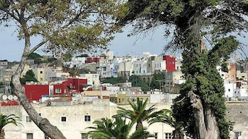 Guided Day Tour of Tangier by Ferry with Lunch from Seville