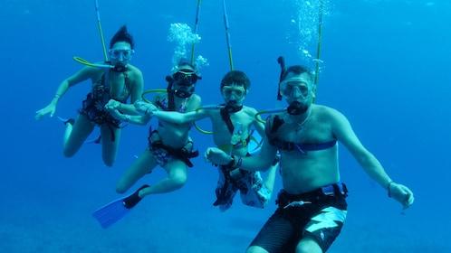 A family of four SNUBA dives in Bermuda