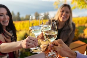 Wine & Food Tour in Sardinia : Small Group