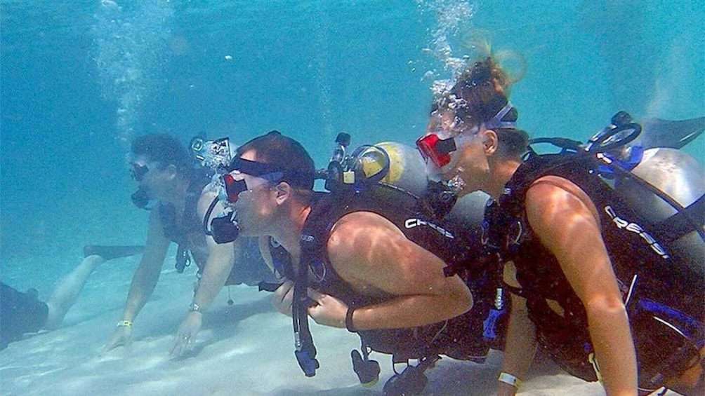 Show item 1 of 5. Group on the bottom of the ocean on the scuba activity in St. Thomas & St. John, US Virgin Islands
