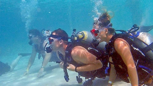 Group on the bottom of the ocean on the scuba activity in St. Thomas & St. John, US Virgin Islands