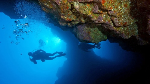Calm scuba diving trip in St. Thomas & St. John, US Virgin Islands