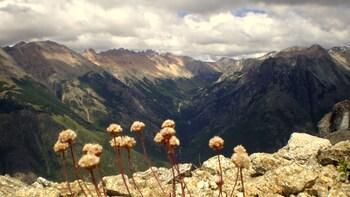 Private Full-Day Trek to Cerro Bella Vista