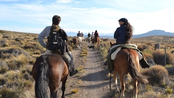 Full-Day Horseback Riding With Barbecue