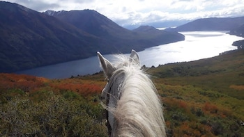 Full-Day Horseback Riding With Lunch
