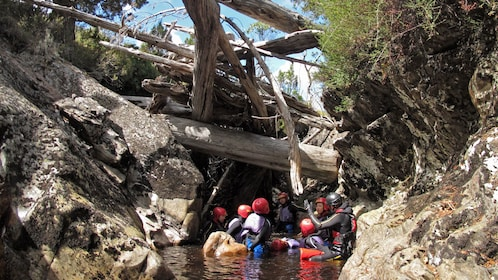 View of the exciting Cradle Mountain Canyoneering Experience