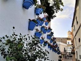 Privat halvdagstur til Marbella fra Malaga eller Ronda