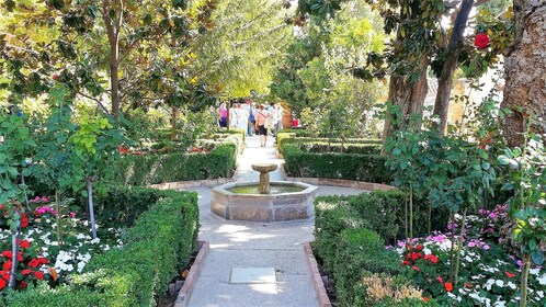 Alhambra private trip from Marbella or Malaga