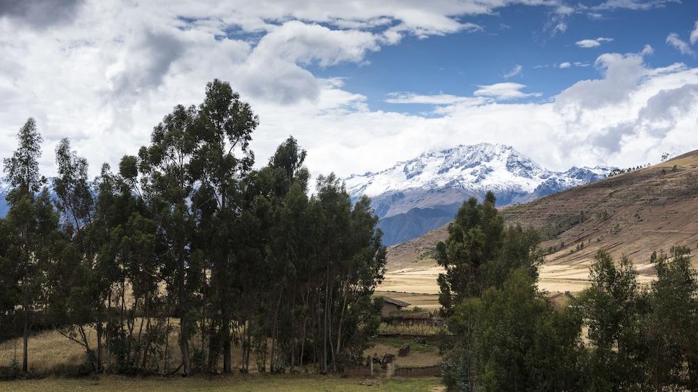 Show item 9 of 9. Full-Day Sacred Valley Tour to Awana Kancha, Pisac & Ollantaytambo
