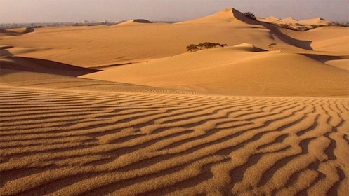 Sand dunes in Lima