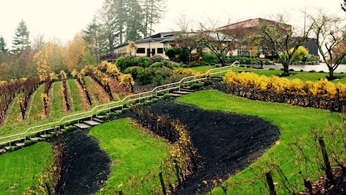 Vineyard and winery in Portland