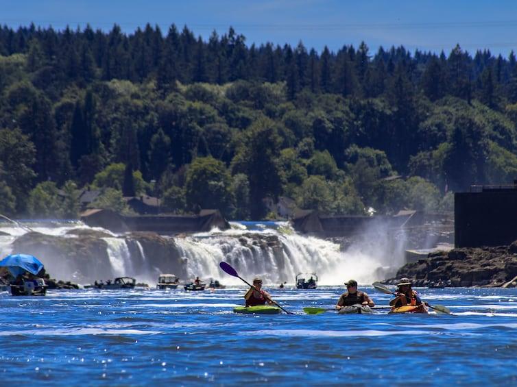 Foto 3 von 6 laden Portland Sightseeing City Tour