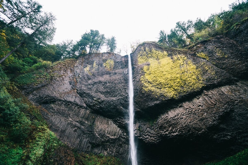 Show item 3 of 10. Half-Day Multnomah Falls & Gorge Waterfalls Tour