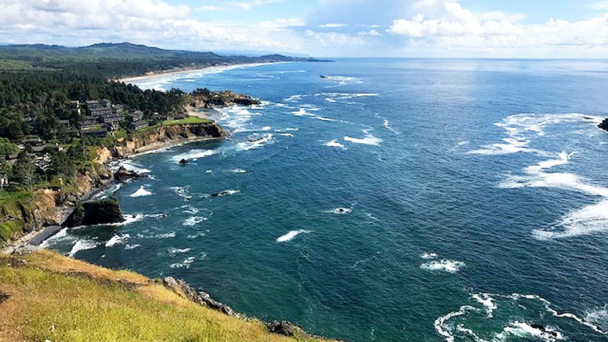 View of coastal cliffs from bluff in Oregon
