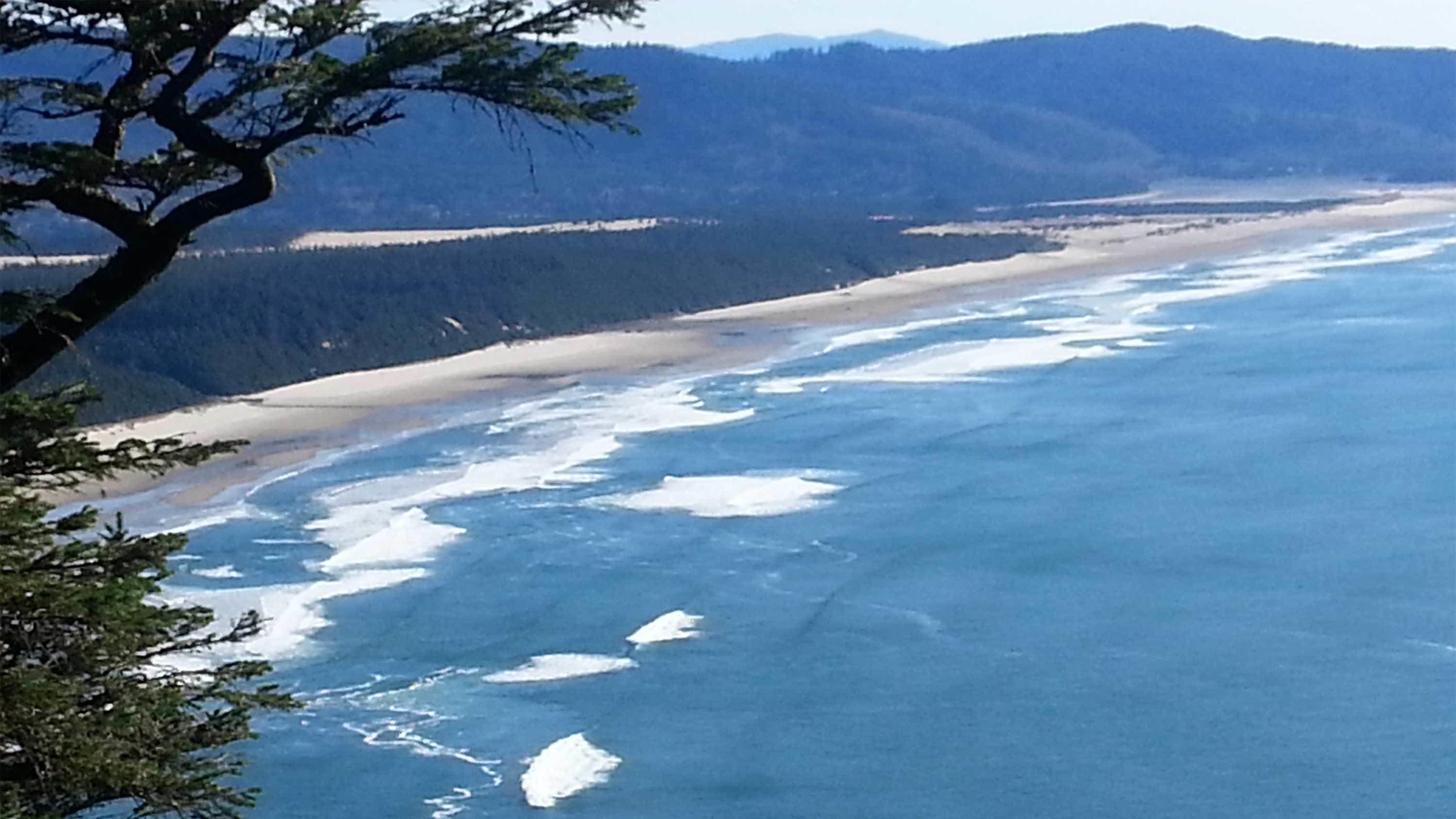 Aerial view of the Oregon Coast