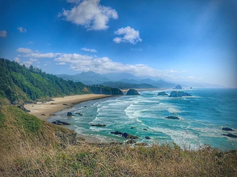 Foto 4 von 10 laden Full-Day Northern Oregon Coast Tour