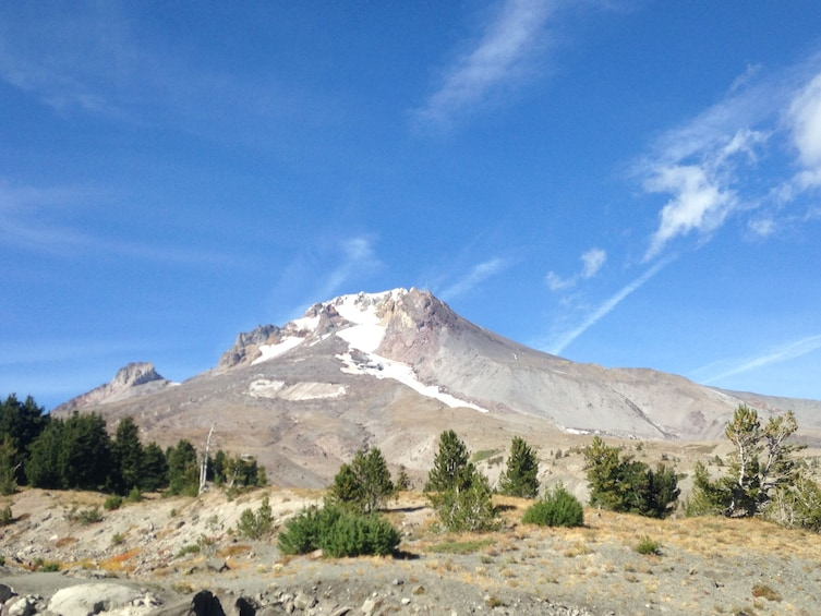 Full-Day Mount Hood & Multnomah Falls Tour