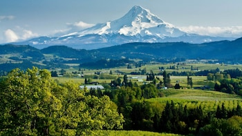 Full-Day Mount Hood & Multnomah Falls Tour