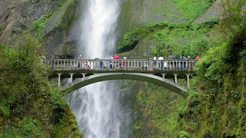 Full-Day Columbia Gorge Waterfalls Tour with Wine Tasting