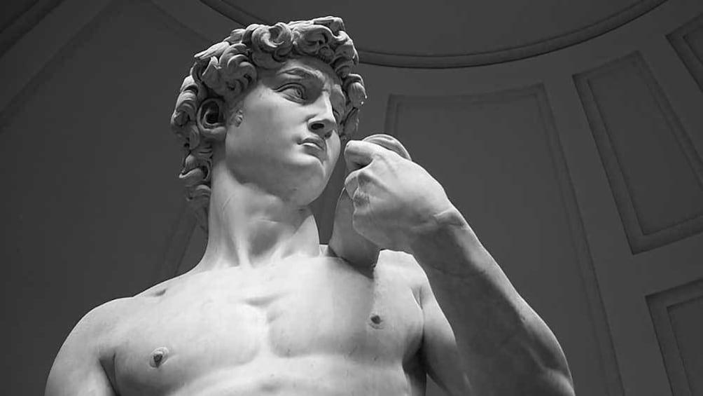 แสดงภาพที่ 1 จาก 7 the statue of David inside a museum in Florence