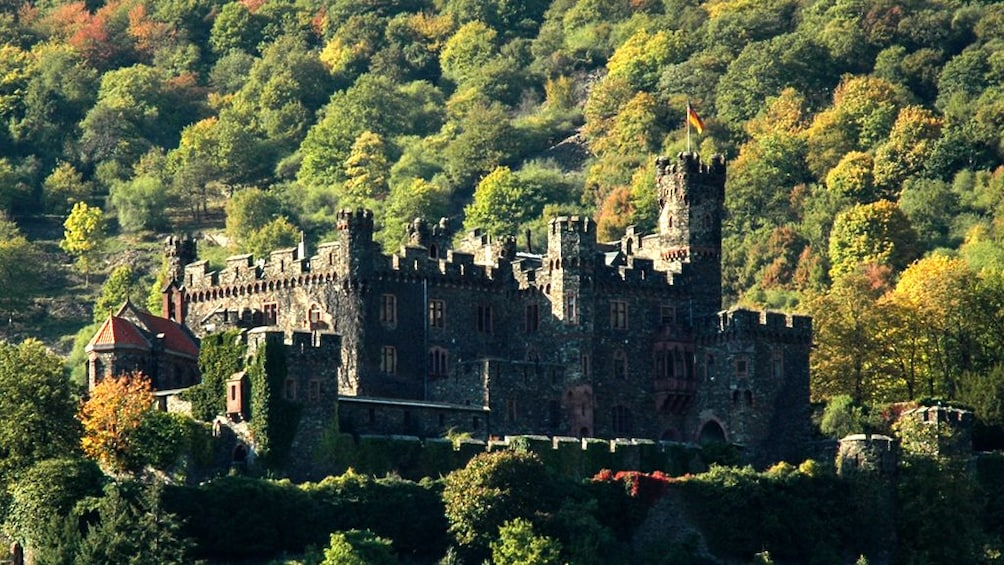 Castle Rheinberg